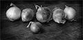 Onions after Mu Chi